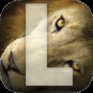 app_Strmiska_l_lion