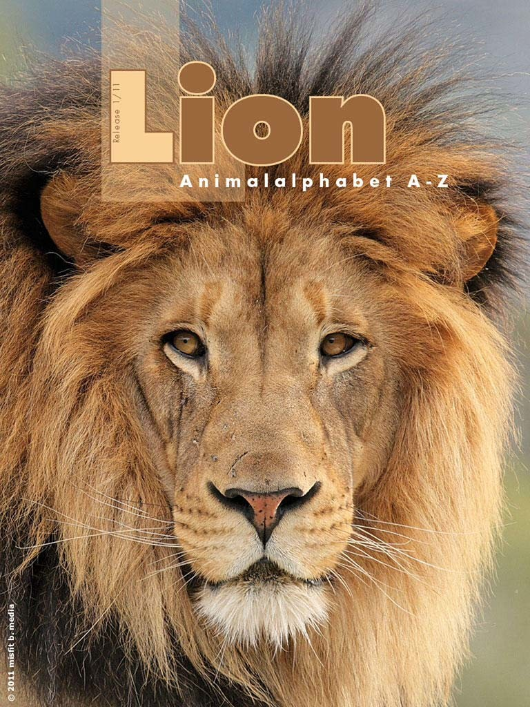 app_Strmiska_l_lion1