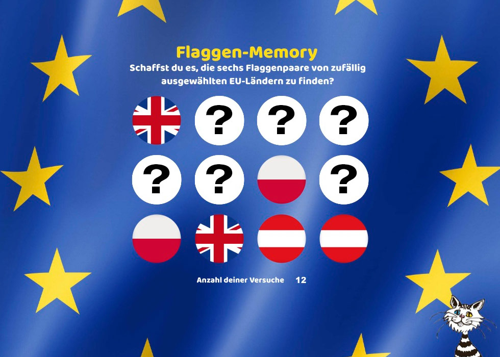 European Union flags memory