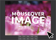 Mouseover Image